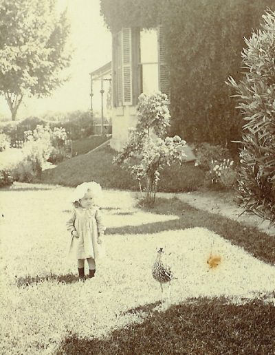 Visiting girl and 'curly' the curlew taken at sunnyside in 1901